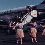 55564 Hawaiian Hospitality