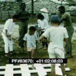 83670 Vietnam Dailies 29